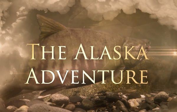 The Alaska Adventure